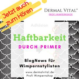 Frontbild zum BlogNews Haftbarkeit durch Primer